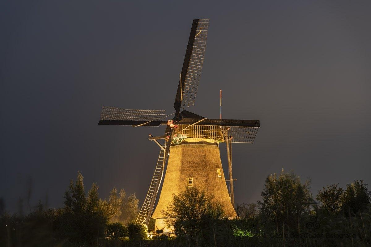 20200908-Kinderdijk-website-7227